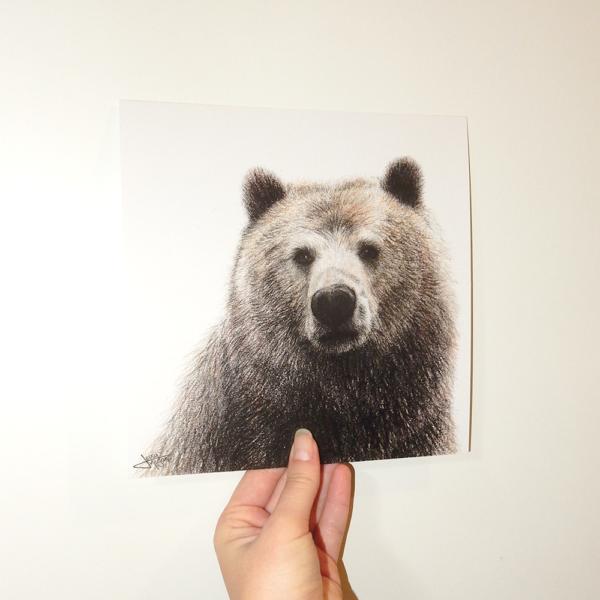 Jessy Megan print portrait animal Ours