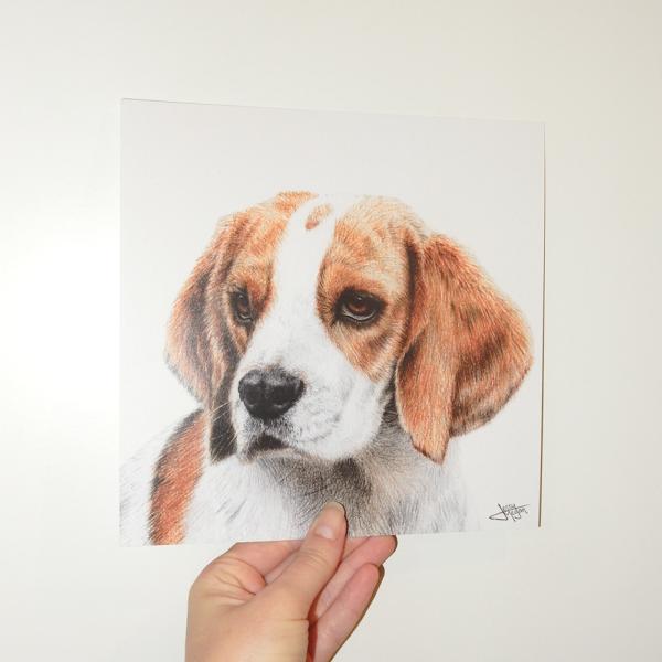 Jessy Megan print portrait animal Beagle