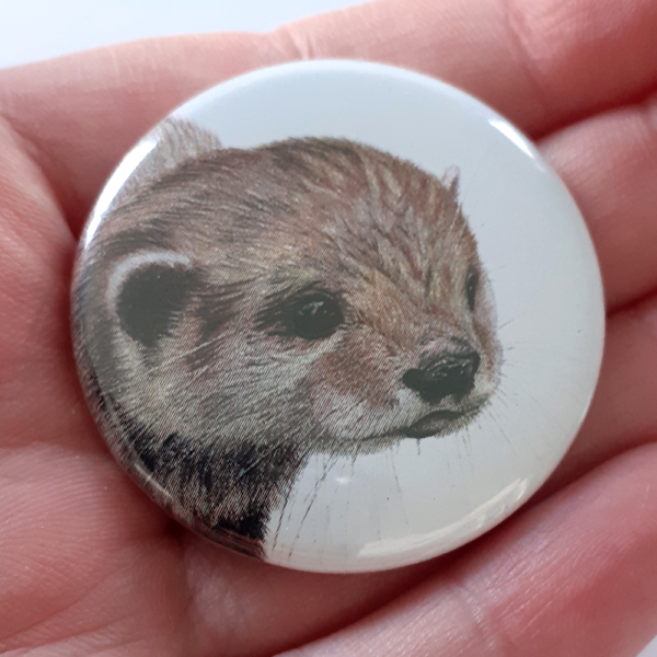 Jessy Megan badge portrait animal Loutre main