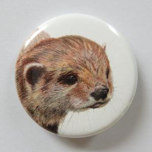 Jessy Megan badge portrait animal Loutre