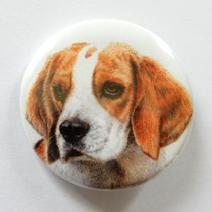 Jessy Megan badge portrait animal Beagle