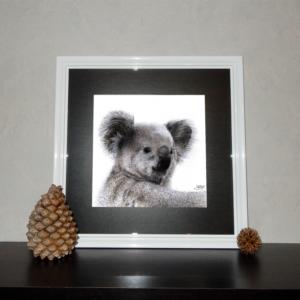 Jessy Megan portrait Koala cadre