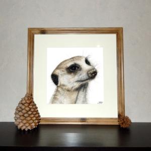Jessy Megan print portrait animal Suricate cadre