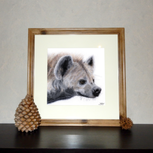 Jessy Megan portrait animal Hyène cadre