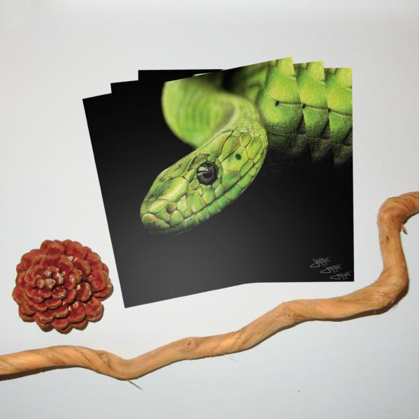 Jessy Megan portrait Serpent triple