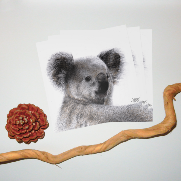 Jessy Megan portrait Koala triple