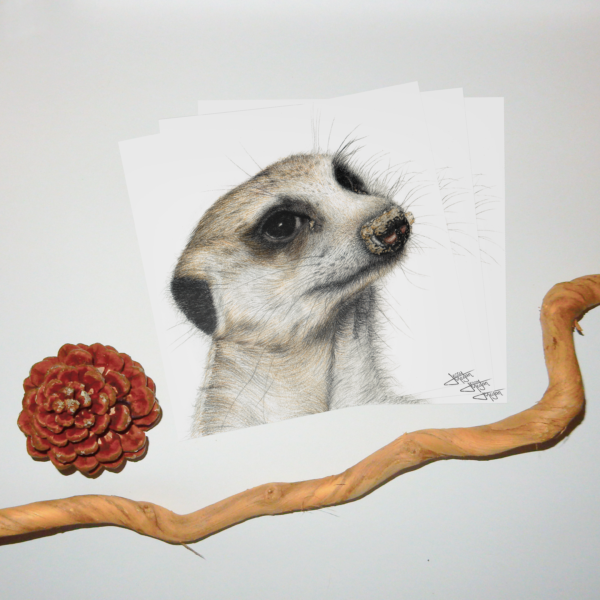 Jessy Megan print portrait animal Suricate triple
