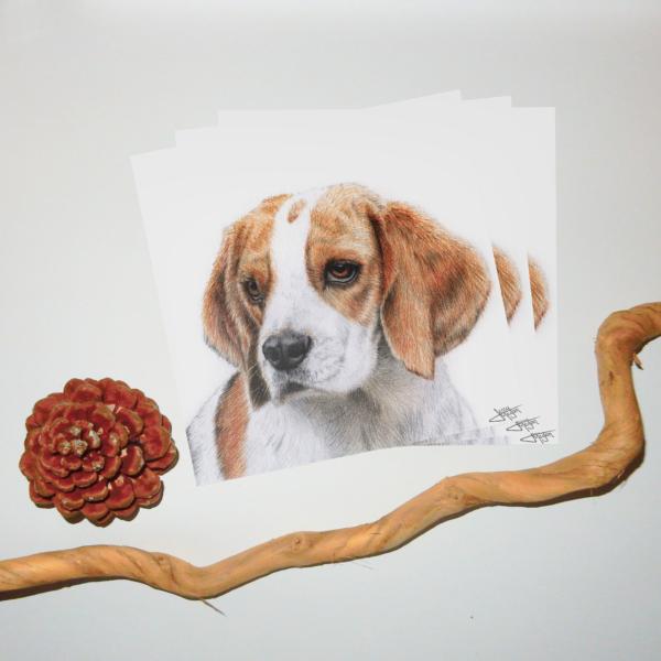 Jessy Megan print portrait animal Beagle triple