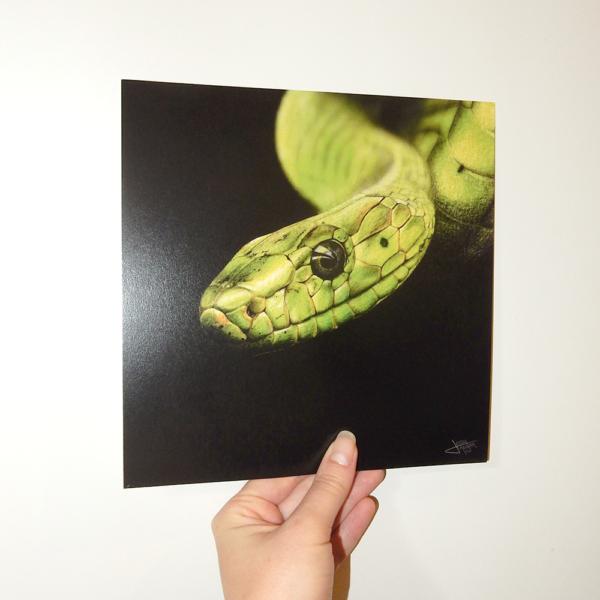 Jessy Megan portrait animal Serpent