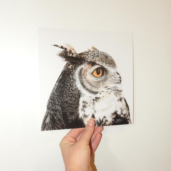 Jessy Megan portrait animal Hibou