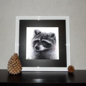 Jessy Megan print portrait animal Raton cadre